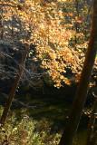 October 22, 2010  #16