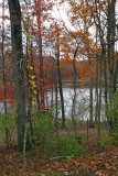 Edge of Laurel Lake