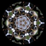 Max Kaleidoscope #2