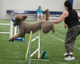 Open Jumpers With Weaves Saturday