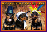 2010 thanksgiving 12x18 a.jpg