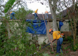 PART OF THE TEAM WORKED ON THE TEMPORARY ROOF TARP AND THE OTHERS CUT UP DOWNED TREES AND BRUSH