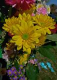 EASTER FLOWERS - ISO 80