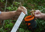 FINDING A GEOCACHE  -  ISO 400