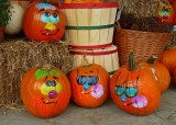 PUMPKINS WITH PERSONALITY  -  ISO 80  -  VIVID COLOR MODE