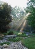 MORNING SUN - CREPUSCULAR RAYS  -  ISO 100