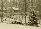 LIGHT SNOW  -  MONOCHROME  -  ISO 80