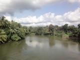 the river where i swam