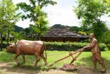 Jeongseon Arari Folk Villiage, Old houses, Depicting an old Korean satire novel, Yangban-jeon