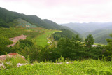 High 1 Golf Course - The highest located course in Korea