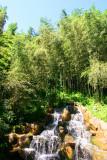Bamboo Park 13.jpg