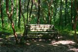 Bamboo Park 18.jpg