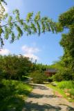 Bamboo Park 19.jpg