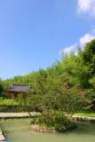 Bamboo Park 20.jpg