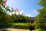 Bamboo Park 21.jpg