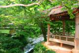 Sosweawon Garden 10.jpg