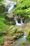 Sosweawon Garden 4.jpg