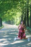 Metasequoia 7.jpg