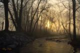 Sunrise Over Foggy Abrams Creek