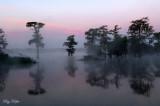 Lake Martin, Louisiana - 2009