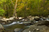 The Start of Autumn - West Prong Little Pigeon River