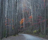 Autumn Road at Dusk