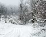 Winter Road to Cove Mountain