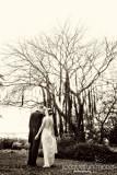Kim and Penn's Sarasota wedding photography highlights at Marie Selby Botanical Gardens