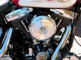 Harleys at Waterfront