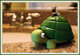 Soap Dish Turtle Invades Bathroom Space