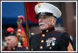 Korean War Marine at the Scranton St. Patrick's Day Parade.