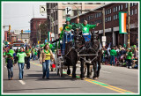 Here Come the Clydesdales at the 2009 Scranton St. Pats Parade