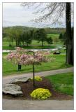 Glen Oak Country Club, Hole 14
