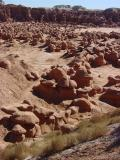 A sea of hoodoos !!!