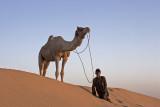 Jaisalmer, Thar Desert camel safari