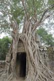 angkor wat, Ta Som-east gate
