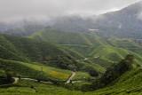 tanah rata, cameron highlands