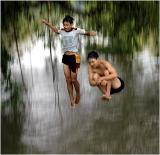 swiming or flying.jpg