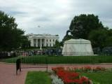 Day 8 Washington