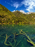 Arrow-Bamboo Lake