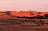 jaimas in the desert - Jaimas en el Desierto