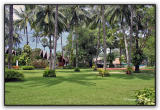 Club Andaman's garden