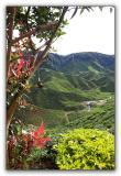 Cameron Valley