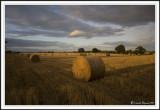 Last light across the bales!