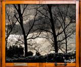 20 - Winter Evening Sky