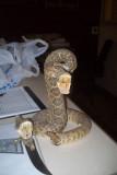 Snake and knife.jpg