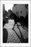 Bruges, villedes calèches