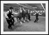 Danse avec les chevaux