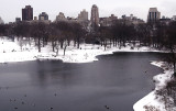 Winter Scenes from Central Park 2009
