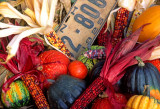 Fall bounty, farm stand, North Sutton, NH